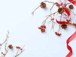 Winter white background with red berries and pine cones