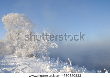 winter, winter-tide, winter-time,  hibernate, he coldest season of the year, in the northern hemisphere from December to February and in the southern hemisphere from June to August. #750620833