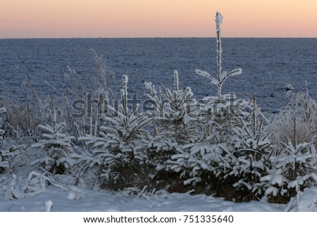 winter winter, winter-tide, winter-time,  hibernate, he coldest season of the year, in the northern hemisphere from December to February and in the southern hemisphere from June to August. #751335640