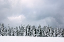 Winter with snow in the Giant Mountains, Czech Republic