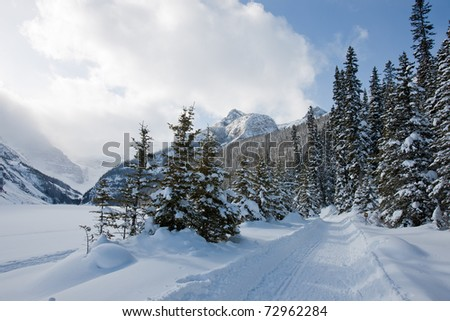 Winter Wonderland in Alberta, Canada