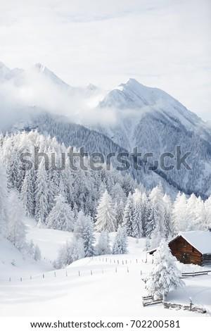 Winter wonderland in Austrian alps  #702200581