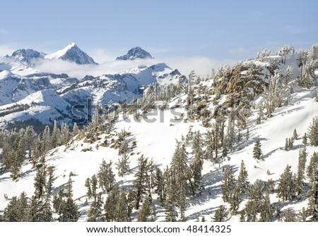 Winter wonderland in Mammoth Lakes, CA.