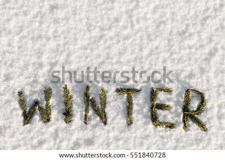 Winter word composed of fir branches on the white snow. holiday decorations #551840728