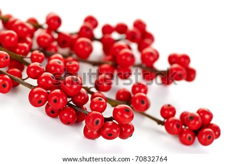 Winterberry Christmas branches with red holly berries
