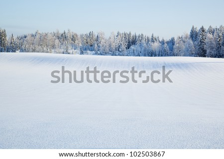 winterscape from finland