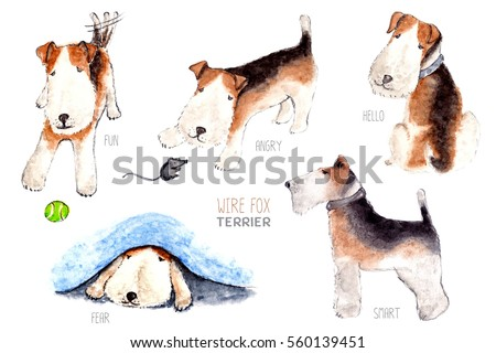Wire fox terrier character, dog emotion and feeling, fun, angry, hello, fear, smart.