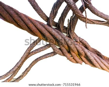 Wire Rope Rust cut into white background. Foto d'archivio ©