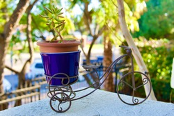 wired metal carriage plant holder