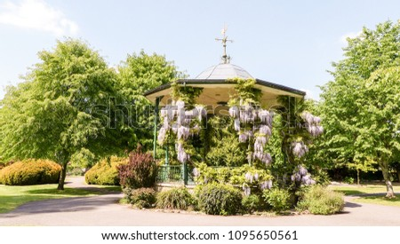 Stock Photo Wisteria covered bandstand in Park