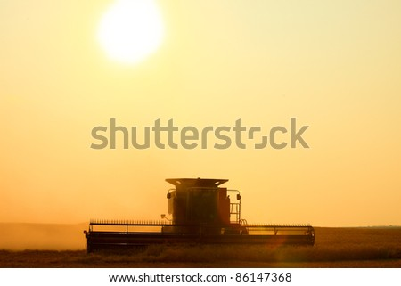 With the sun hanging low on the horizon, a combine harvest wheat in the middle of a farm field.