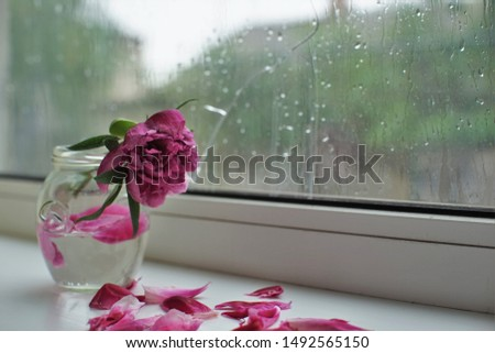 Withered bouquet of flowers on a windowsill, a cracked window, wet from the rain. Loneliness and sadness.