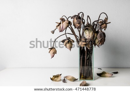 Withered lotus flowers in a glass vase on table