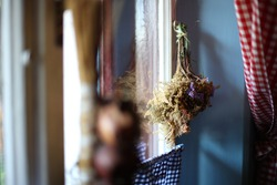 Withered plants hanging near the window, Europe
