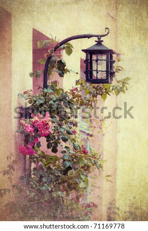 withered roses with a wall lamp