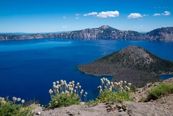 Wizard Island view of Crater Lake National Park in Oregon in summer. Wildflowers in foreground