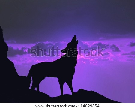 Wolf howling on a mountain cliff