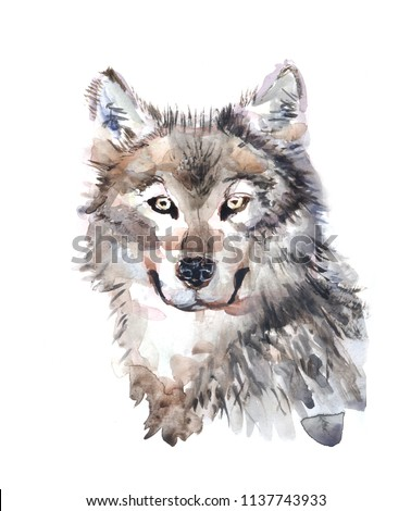 wolf illustration watercolor avatar, print #1137743933