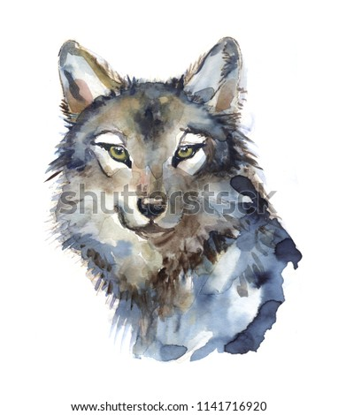 wolf illustration watercolor avatar, print #1141716920