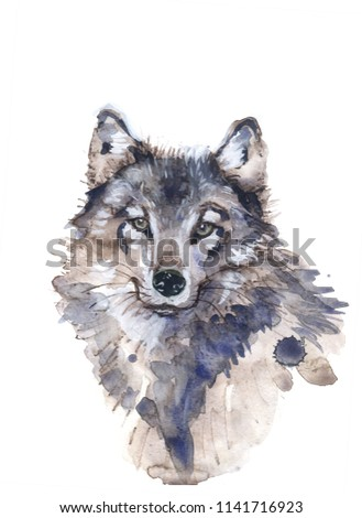 wolf illustration watercolor avatar, print #1141716923