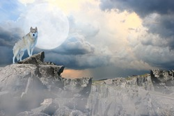 Wolf standing on a mountain under a full moon.