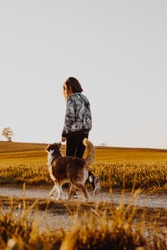 Woman and dog walk along a lonely dirt road at sunset, romantic mood