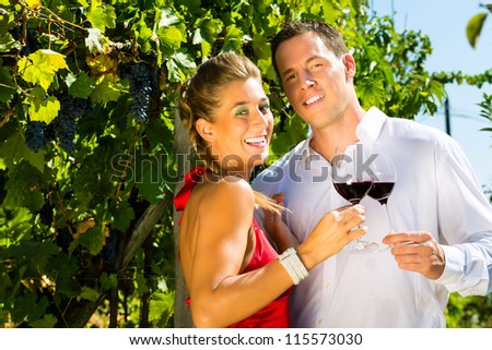 Woman and man standing at vineyard and drinking wine at sunshine and smiling