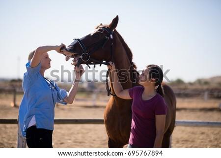 woman assisting vet for...