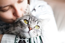 Woman at home holding her lovely  fluffy cat. Gray tabby cute kitten. Pets and lifestyle concept.