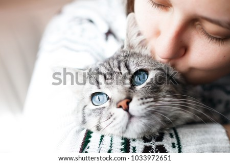 Woman at home kissing her lovely  fluffy cat. Gray tabby cute kitten with blue eyes. Pets and lifestyle concept.