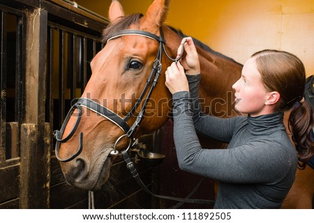 Woman bridle a horse in the stall