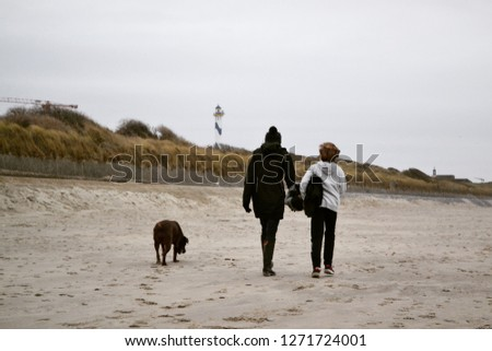 Woman, child and brown Labrador Retriever dog walking at the beach in winter with dunes in background #1271724001