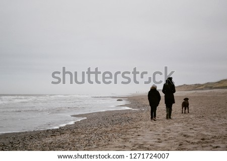 Woman, child and brown Labrador Retriever dog walking at the beach in winter with sea in background #1271724007