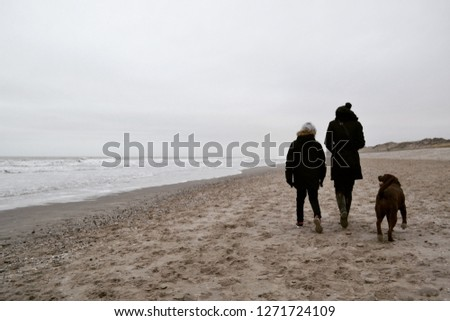 Woman, child and brown Labrador Retriever dog walking at the beach in winter with sea in background #1271724109