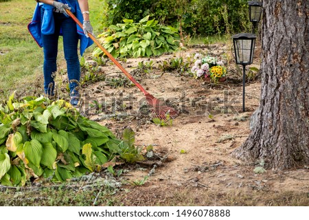 Woman cleaning loved ones grave plot with rake, plot maintenance services in a cemetery concept. #1496078888