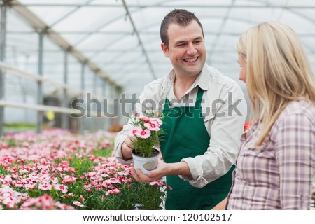 Woman deciding on flower with employee in greenhouse garden center