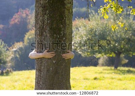 Woman embracing a tree in a meadow