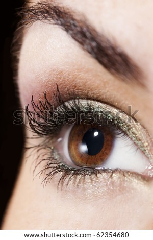 Woman eye with beautiful golden make up