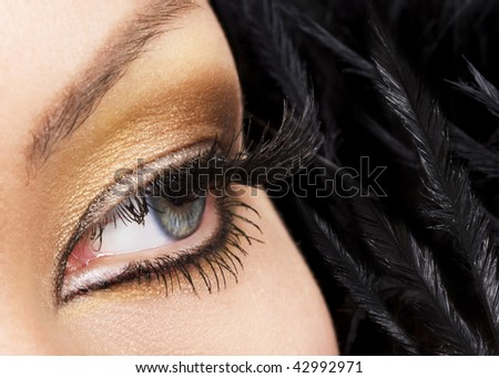 Woman eye with golden makeup and long eyelashes. Black feathers on background.