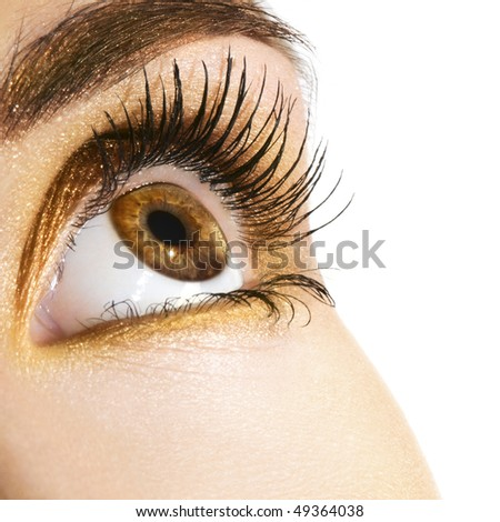 Woman eye with golden makeup. Space for text.