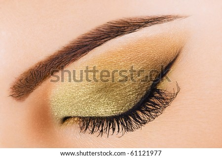 Woman eye with long eyelashes and beautiful makeup