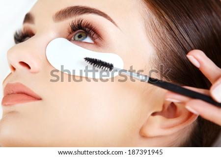 Woman eye with long eyelashes. Mascara Brush. High quality image.