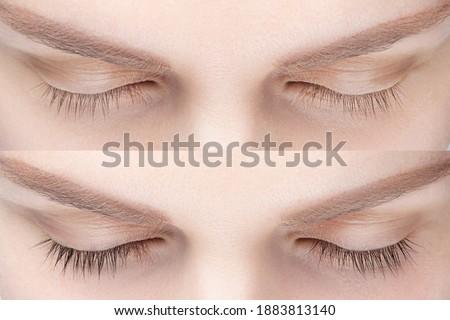 Woman eyelash tinting before and after. Henna tint, lamiation, keratin. ストックフォト ©