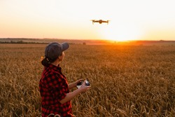Woman farmer with drone on the wheat field. Smart farming and precision agriculture