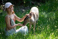 Woman feed bambi deer. Unity with nature. Wild animals concept. Girl feeding fawn. Animal at park