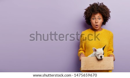 Woman fond of pets. Shocked female volunteer found homeless animal at street, holds wooden box with little pedigree puppy, dressed in yellow knitted sweater, stands against purple wall, empty space #1475659670