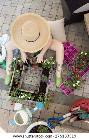 Woman gardener sitting on her brick patio in a wide brimmed straw sunhat transplanting nursery seedlings from trays into a large flowerpot to beautify her house in spring, view from above