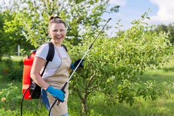 Woman gardener with pressure sprayer backpack spraying apple trees in a spring orchard, protecting garden from bacterial fungal diseases, pest parasites, using chemical and biological preparations