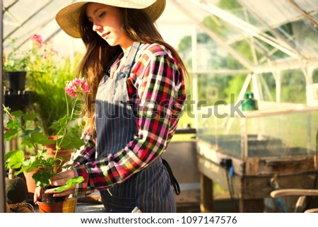 Woman gardening in a greenhouse Stock photo ©