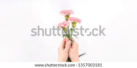 Woman giving bunch of elegance blooming baby pink color tender carnations isolated on bright marble background, mothers day decor design concept, top view, close up, copy space #1357003181